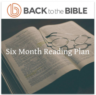 This image is a related visual description of the project 'Six Month Reading Plan Challenge' that was created by 'Back To The Bible'.