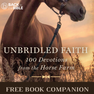 This image is a related visual description of the project 'Unbridled Faith - Free Book Companion' that was created by 'Back To The Bible'.