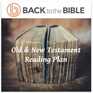This image is a related visual description of the project 'Old & New Testament Reading Plan' that was created by 'Back To The Bible'.