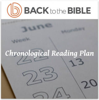 This image is a related visual description of the project 'Chronological Reading Plan' that was created by 'Back To The Bible'.