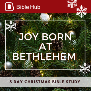 This image is a related visual description of the project 'Joy Born at Bethlehem || BibleHub' that was created by 'BibleHub'.